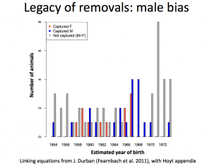 Legacy of captures male bias