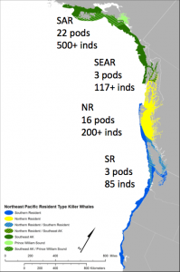 Whales per square kilometer in resident populations