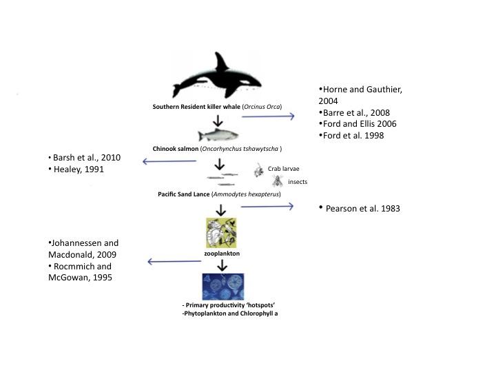 Phytoplankton and Salmon? | Beam Reach