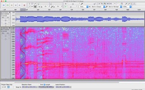 Spectrogram of 0.5 second sonar pings at 3.25, 6.5, and 9.75 kHz recorded on the Orcasound hydrophone.