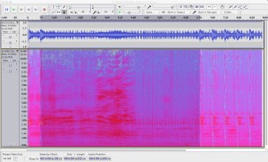 Spectrogram of 8-minute recording from the Orcasound hydrophone.