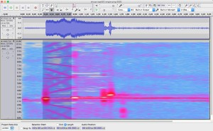 Spectrogram of a single ping from the SQS-53C sonar during the 2003 Shoup incident.